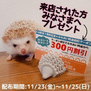 すみれファミリー展示開始記念イベント開催!