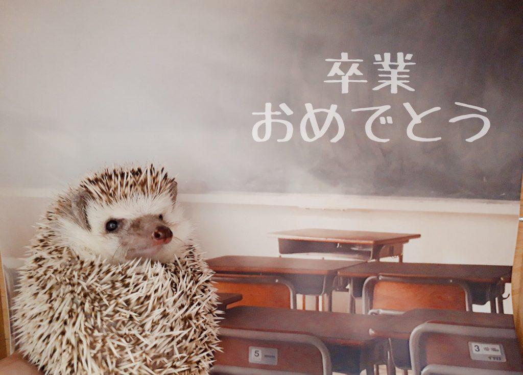 3/9(土)・3/10(日)の2日間!「フォトジェニックな日」開催!!