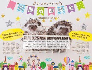 ゴールデンウィーク特別企画☆ふれあい展示即売会開催!
